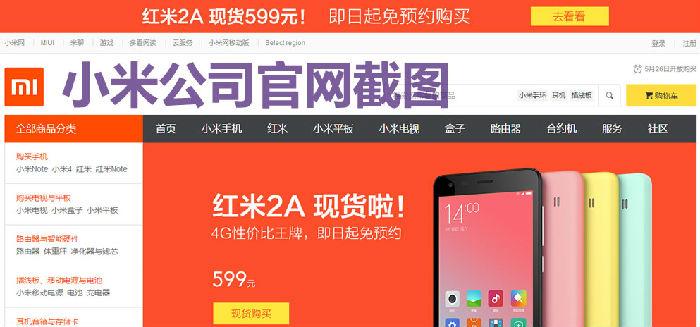 手机销售成功案例_小米公司的网络营销工作成功原因分析